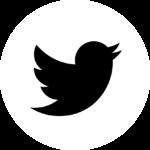 twitter_bright