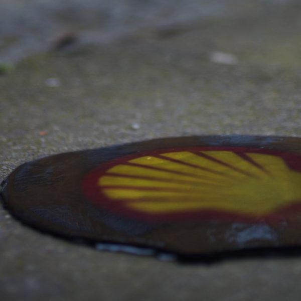 shell processo 9 ogoni olanda