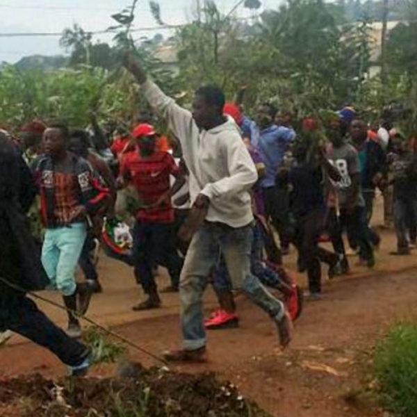 voto Camerun