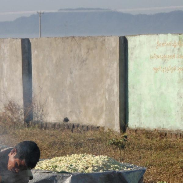 myanmar violazioni diritti umani rakhine