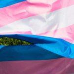 cina transgender operazioni